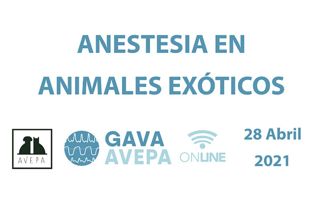 Jornada online de Anestesia en Animales Exóticos